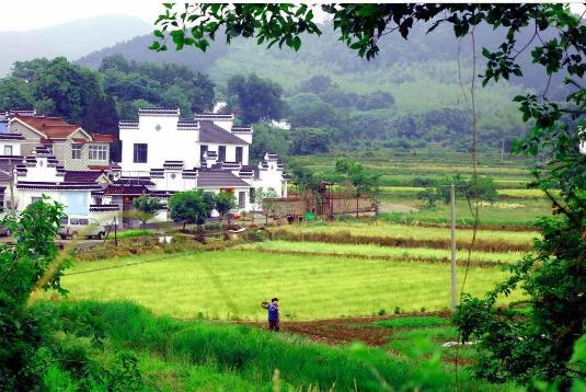 位于群山环抱中的濮塘镇南池村,隐约在青山绿水之间的一户户村庄,粉墙